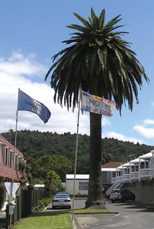 Motel Six Whangarei